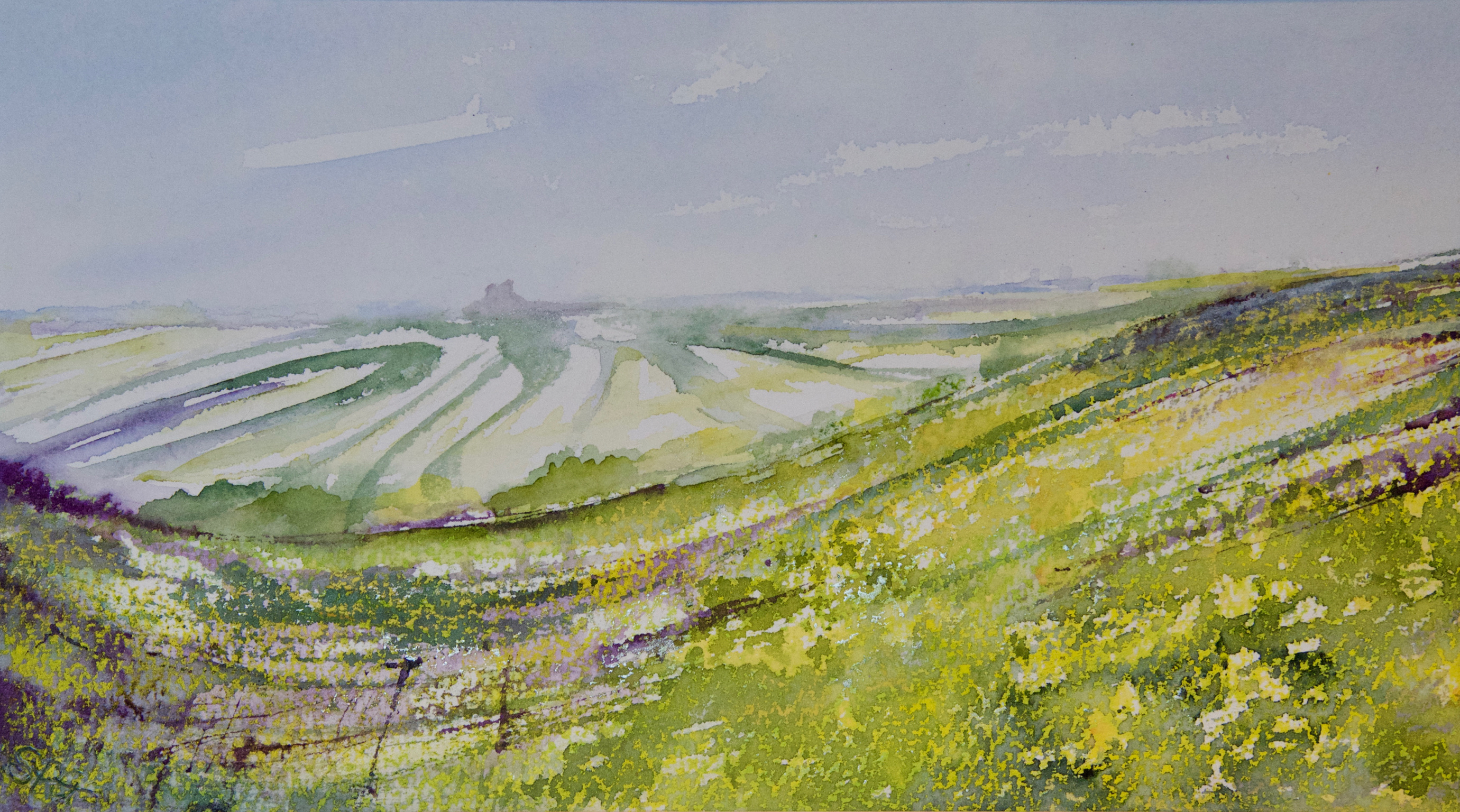 Standing in the Cowslips on Wittenham Clumps