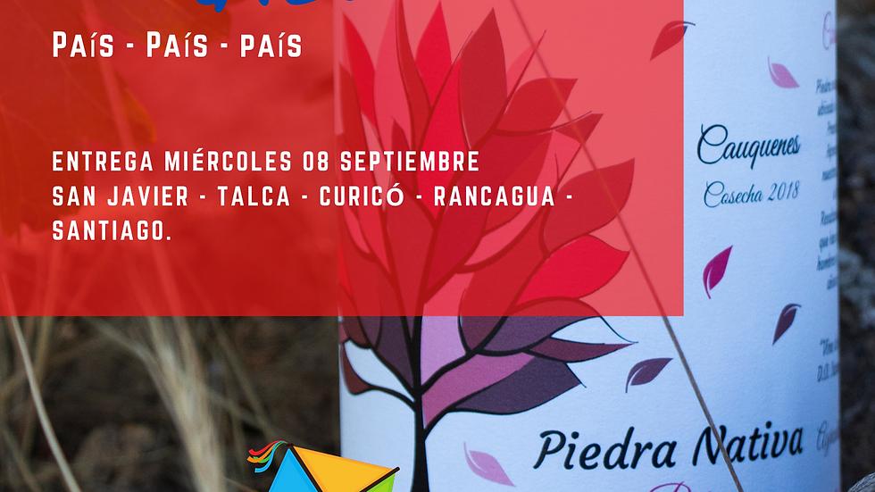 """Promoción Septiembre 3 """"El Picao"""""""