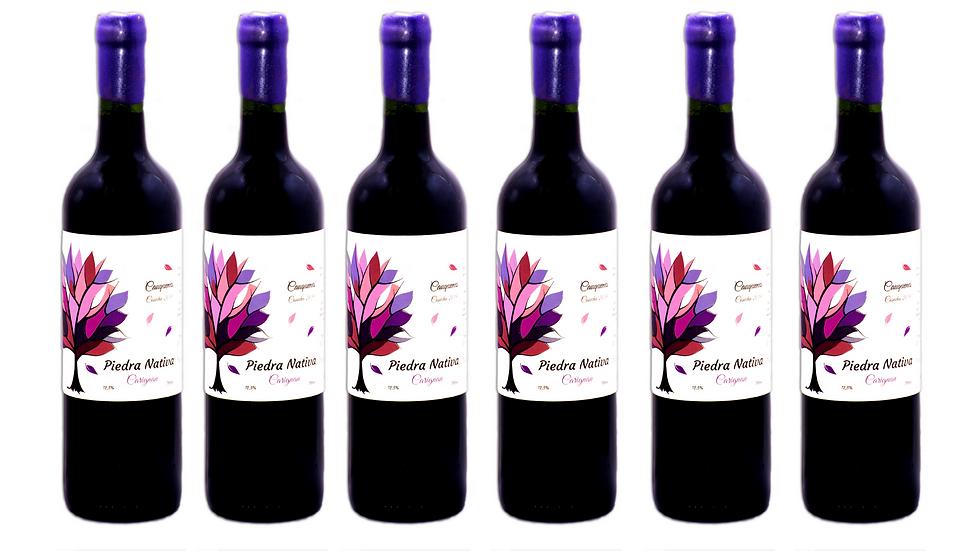 Caja 6 botellas Carignan 2019 Piedra Nativa