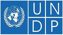 UNDP Logo.jpg