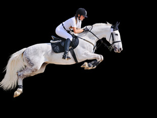 Can our horses really benefit from healing?
