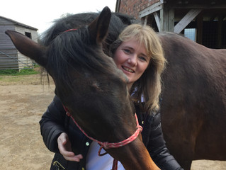 EVERYTHING HORSE JUNE 2018      Can our horses really benefit from healing?