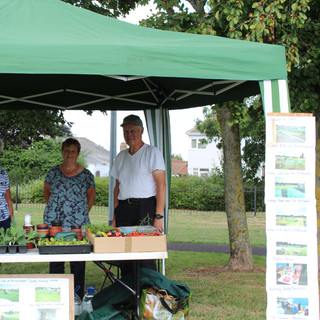 Selling goods from local allotments