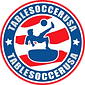 TableSoccerUSA_logos_2020_badge.png