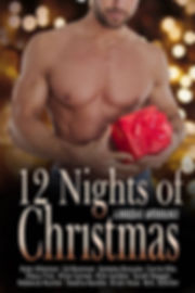 12 Nights of Christmas Cover 300x450.jpg