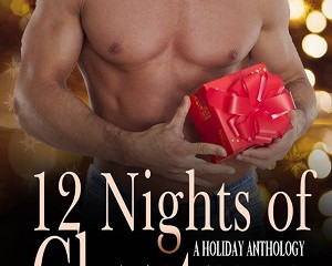12 Nights of Christmas - Cover Reveal!
