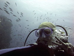 Diving Komodo Islands