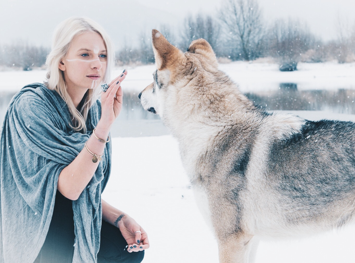 Connecting with wolves in Slovakia