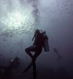 Diving Komodo Islands in Indonesia