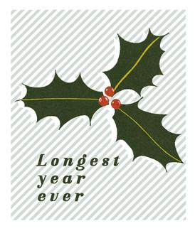 Longest Year Ever