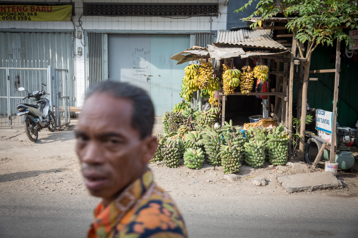 Sulawesi-3069