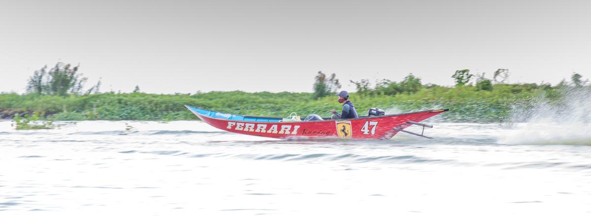 Sulawesi-3358