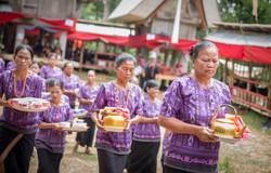 Sulawesi-3831