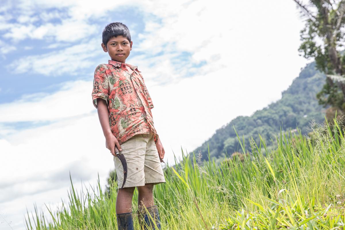 Sulawesi-4211