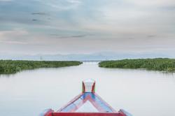 Sulawesi-3369