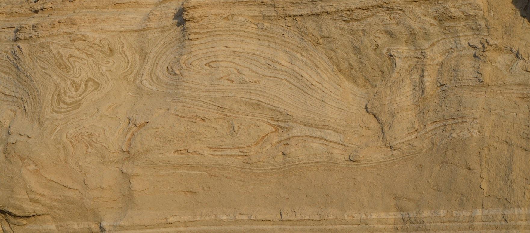 SeismicFold.jpg