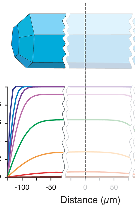 wire_diagram_1T_fragment.png