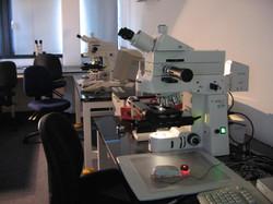 microscopes.jpg