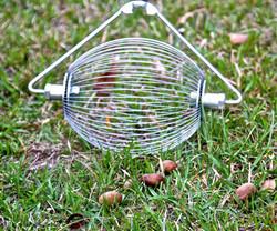 14 inch Nut WIzard