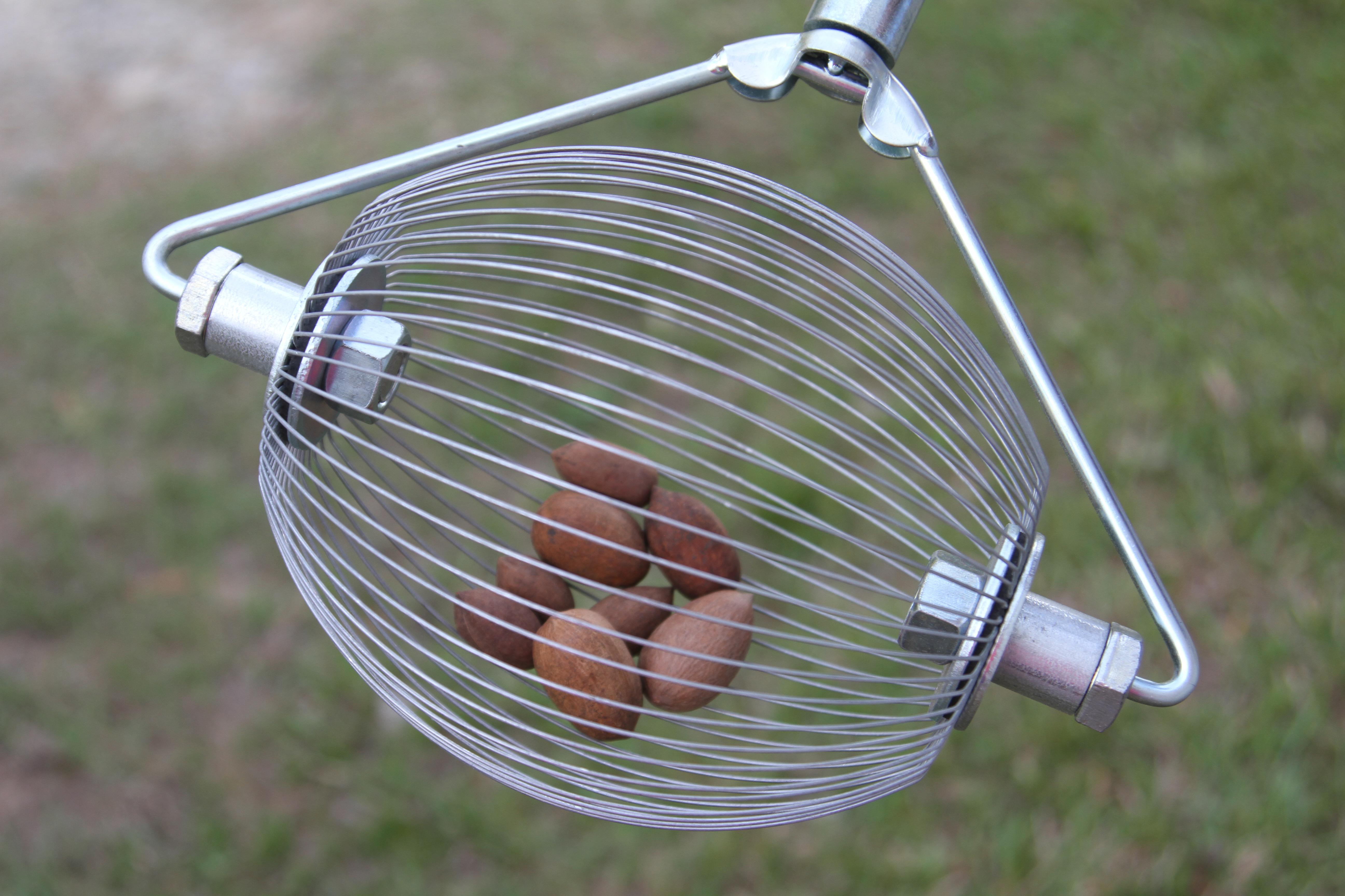 12 inch Nut WIzard