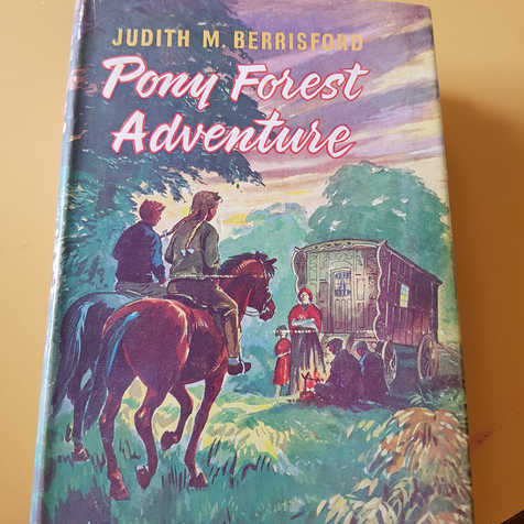 Judith M Berrisford 'Pony Forest Adventure'