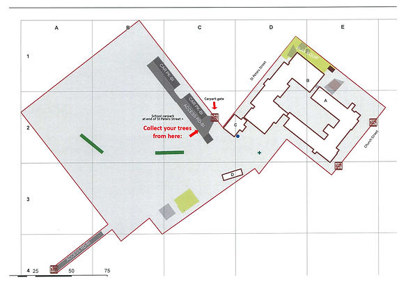 SPPS_Campus_site_plan_XMASTREES_web.jpg