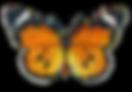 butterflies-clipart-autumn-1.png