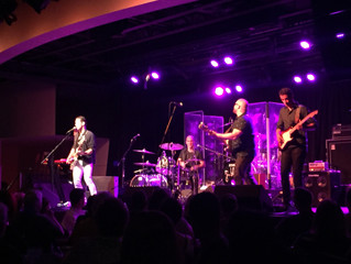 Best Not Broken Joins The Gin Blossoms!