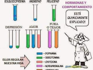 ¿Qué hormona has generado más hoy?