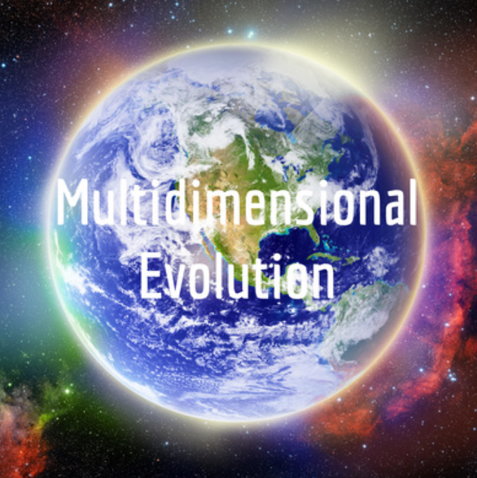 Manori on Multidimensional Evolution Podcast