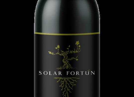 Solar Fortún - Petit Verdot