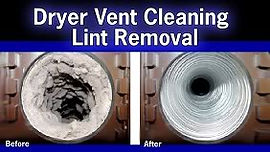 Before and After Lint Removal