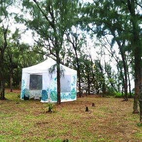 Ateliers INSPIRE - ce matin à Piton Grand Anse :-)