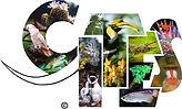 CITES Convention