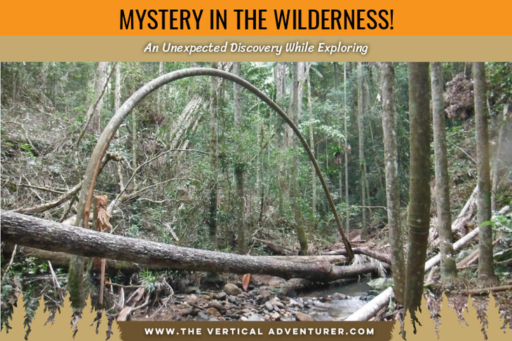 Mystery in the Wilderness! An Unexpected Discovery While Exploring