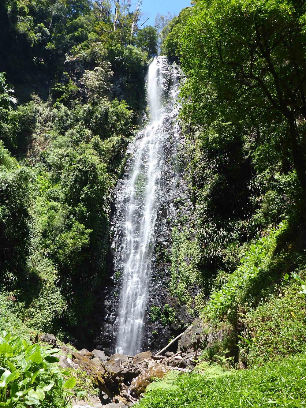 Larapinta Falls Lamington National Park