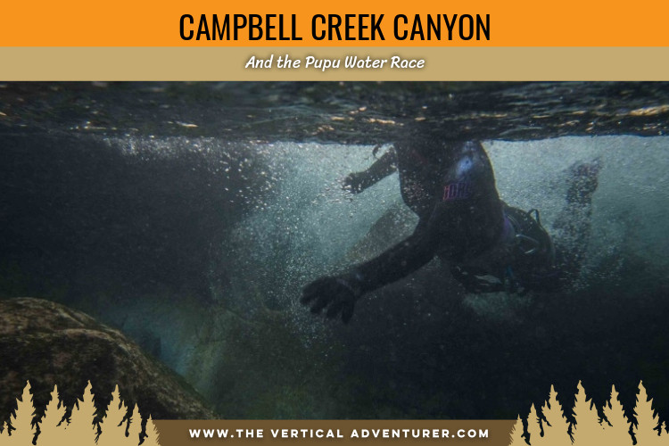 Campbell Creek Canyon and the Pupu Water Race