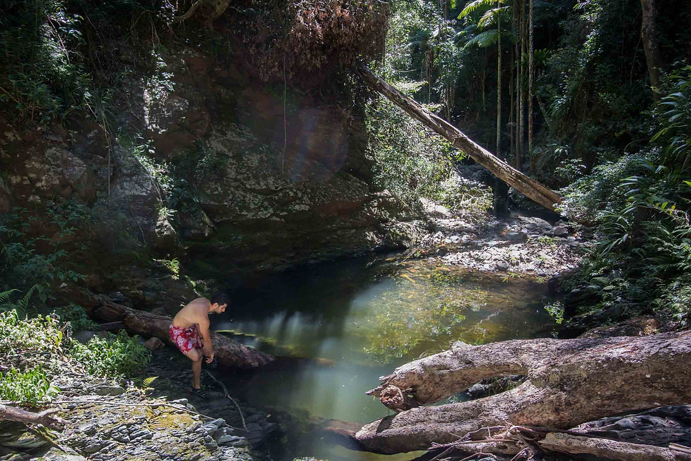 MILL RAIN FOREST SECRET SWIMMING HOLE