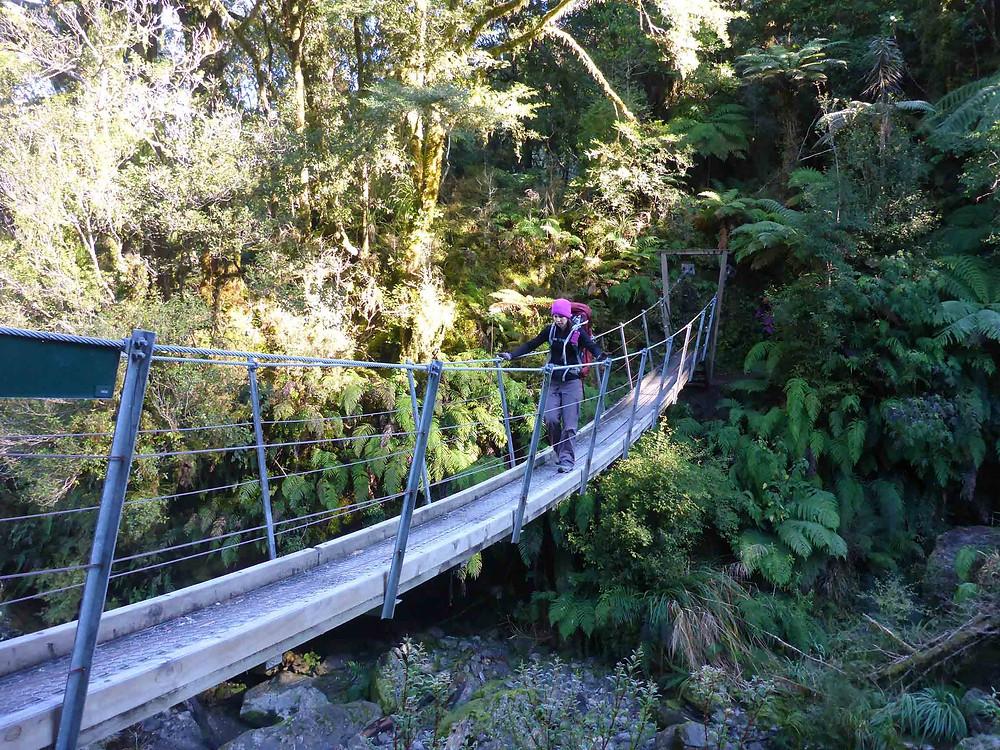 NZ bridges