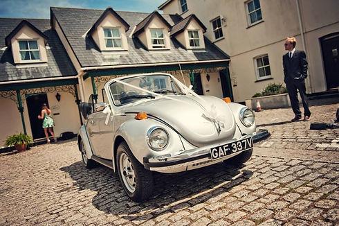 VW5.jpg