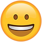 Smiling_Face_Emoji_large.webp