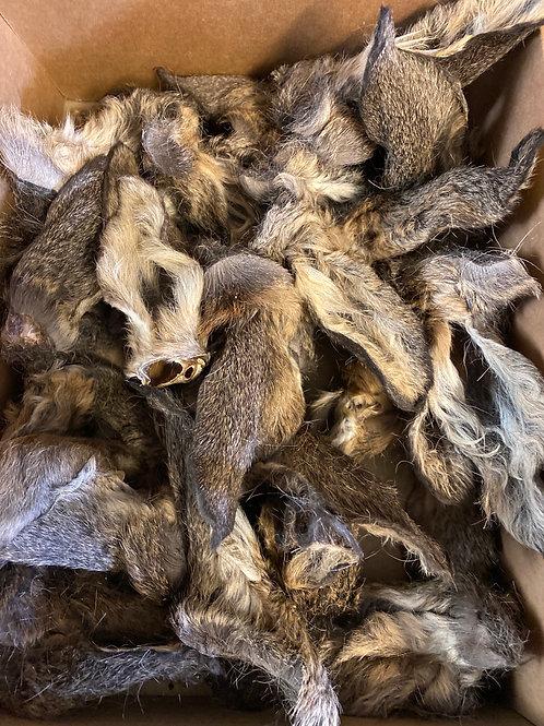 Deer Ears with Fur