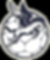 Dallas THC Team Handball Club_Logo dark.