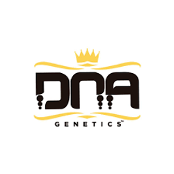DNA Genetics Cannabis