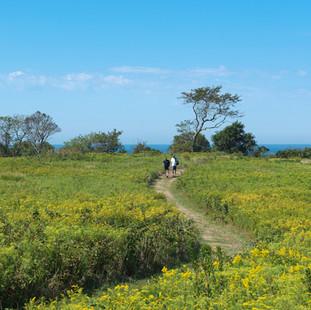 Hodge Family Wildlife Preserve