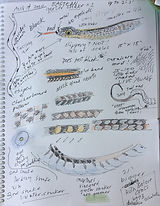 Garter Snake Sketches by Josie Merck