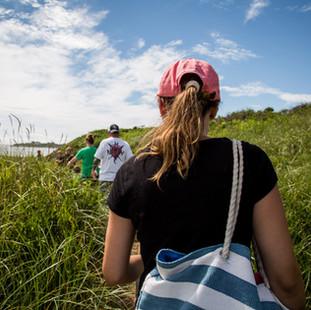 Nature Walk on Block Island