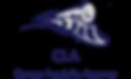 лого оригинал.PNG