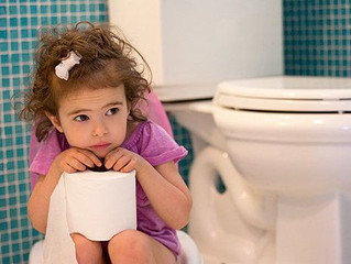 Commonly Asked Questions about Toilet Training