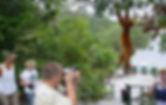 Amazon Ecopark_16.jpg